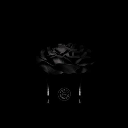 rose-noire